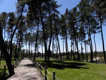 sao lourenco park Abrantes