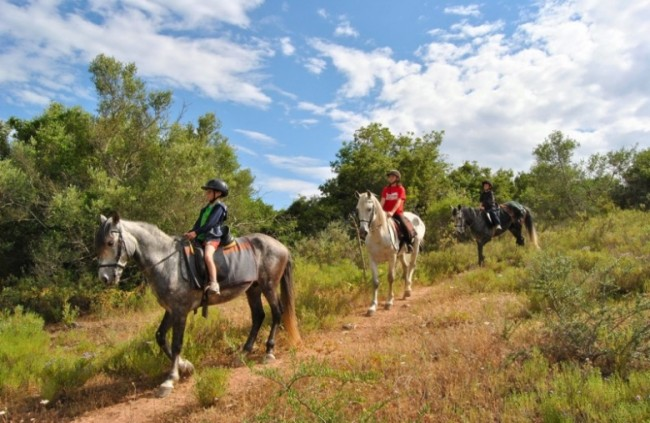 Horse riding Ria Formosa