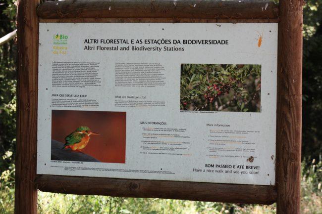Hiking Portugal, Ribeira da Foz