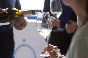 Passeio e provas de vinhos Arraiolos, Évora, Alentejo