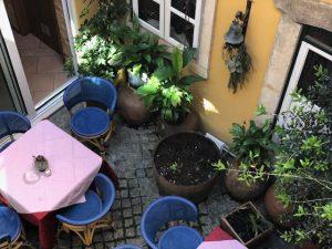 Solar do Bacalhau restaurant Coimbra
