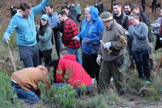 Reforestation Team building Go Discover Portugal