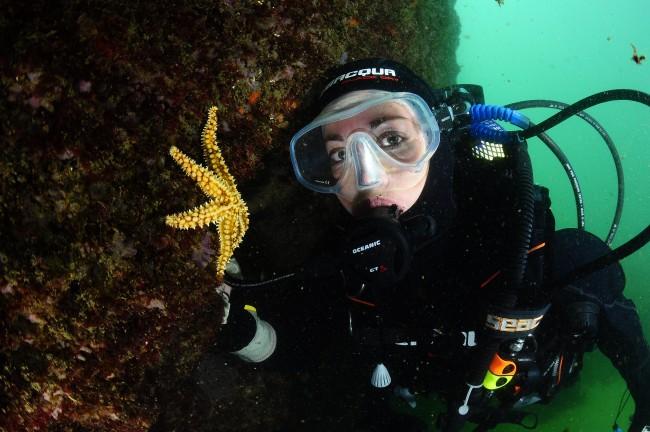 Scuba diving Lisbon