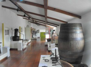 Museu rural do Cartaxo