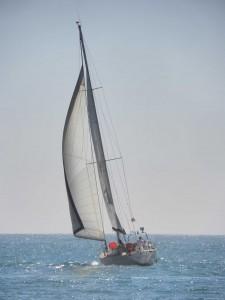 Aprenda Vela com a Sailing Lisbon