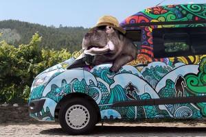 Getaway in a campervan hire Porto!