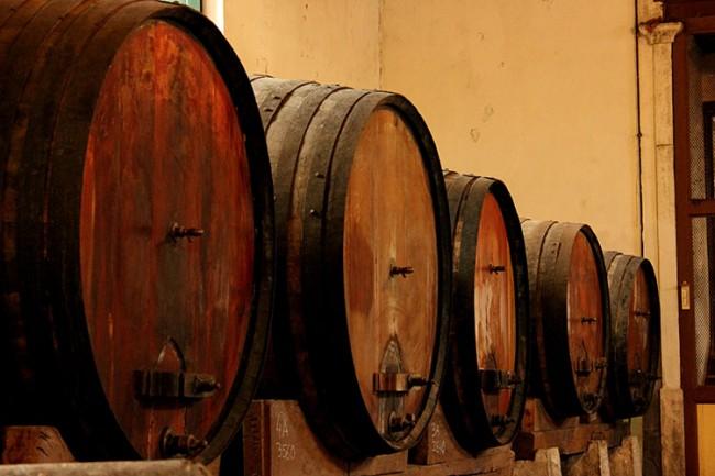 wine tasting and events Adega Viuva Gomes