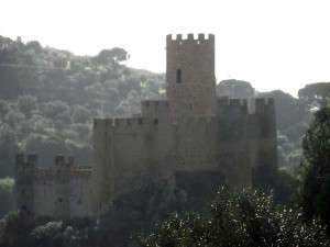 Almourol castle in the Tejo
