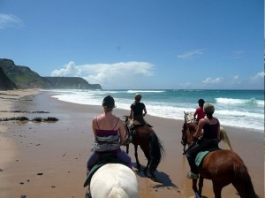Horse riding Algarve