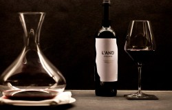 L-and Wine Provas de vinho e cursos