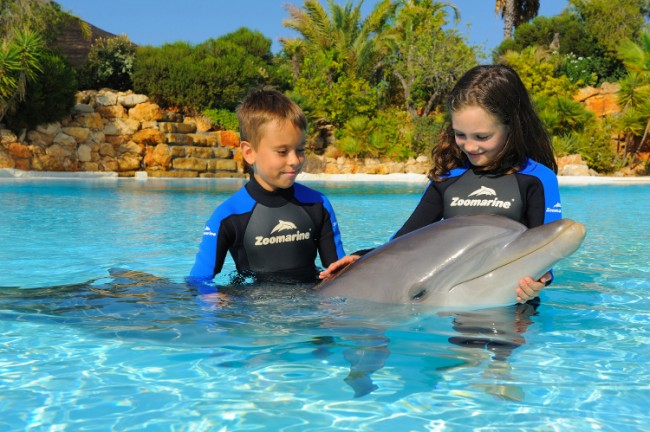 Dolphin emotions Algarve