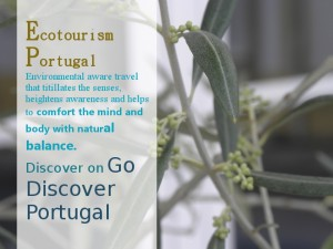 Ecological tourism in Portugal, luxurious, authentic and aware discoveries