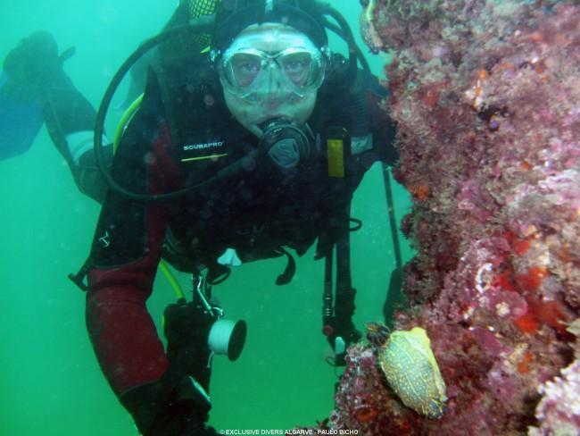 Scuba diving Portimão Algarve
