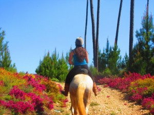 O Vale dos Cavalos, horse riding trails and holidays Tomar, Central Portugal
