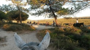 Horse Riding tours and experiences, Ria Formosa, Outeiro, Algarve