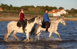Beach horse riding Alentejo