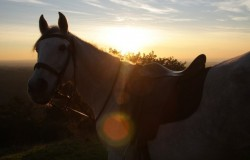 horse riding tours, mountain rides, Setubal