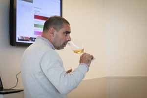 Adega Mayor, Wine tasting and wine activities, Alentejo