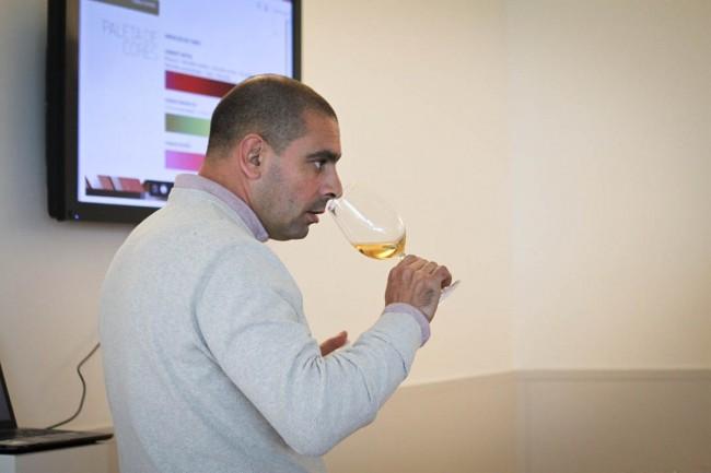 Campo Mayor wine events Alentejo