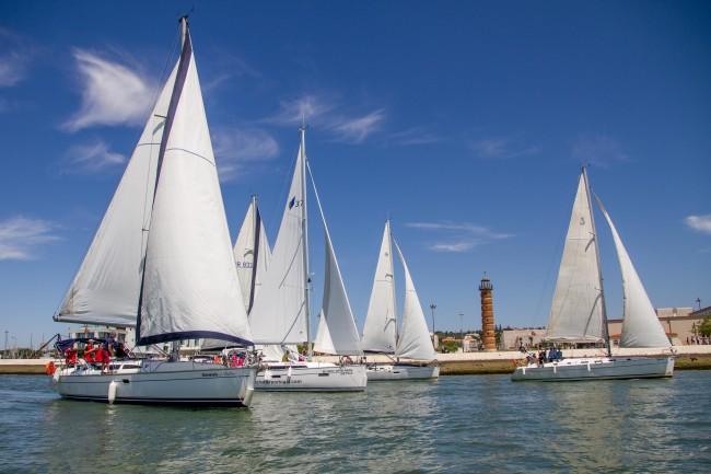 Saling regattas team building and group sailing