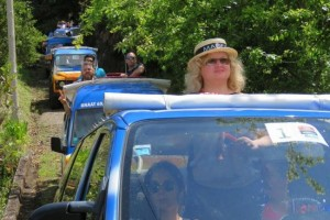 Madeira nature jeep  tours