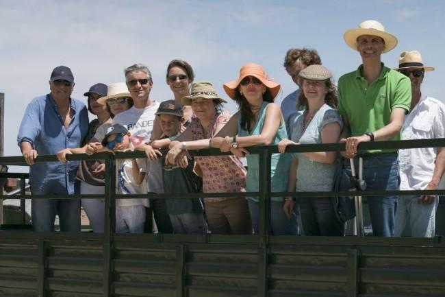 Bull tour Evora