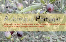 Autumn in Portugal, Go Discover a warm climate, get travel tips and know what makes Portugal unique in autumn
