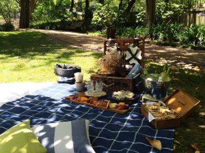 Picnic in Lisbon, executive picnics and private events