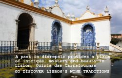 Discovering the Wines of Lisbon, Quinta das Carrafouchas