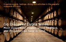 Discovering the Wines of Evora, Alentejo