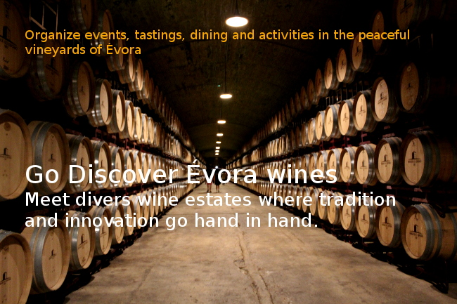 Evora wines article
