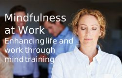 mindfulness guide to accompany the workshops