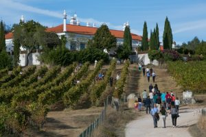 Monte da Ravasqueira, Wine events and coach museum, Evora
