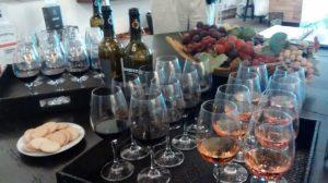 Setubal wine tasting  discovery
