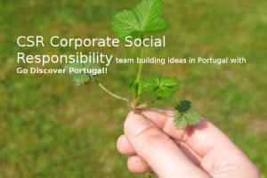 CSR corporate social responsibility, Environmental & Charity Team buildings in Portugal