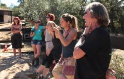 Equine Assisted training for Corporate Leadership and Team Building, Portugal