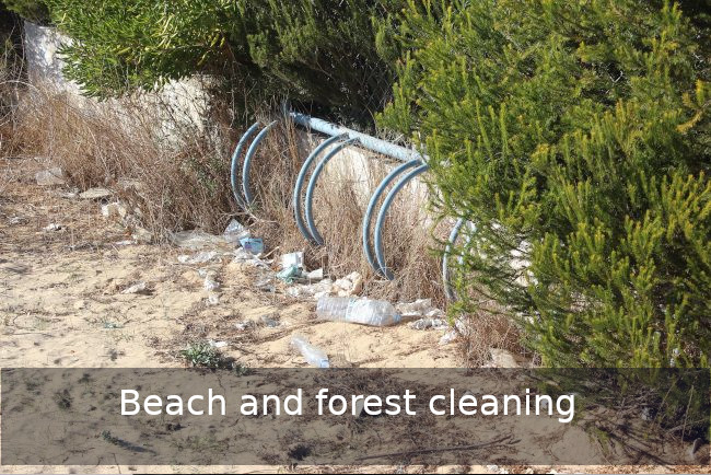 Go Discover beach cleaning Team building