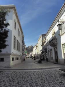 the pedestrian Rua Serpa Pinto
